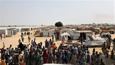 Borno Government Breaks Silence On Suspected COVID-19 Death