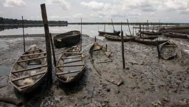 Controversies, Conflict Of Interest Threaten To Cripple Niger Delta Clean-up