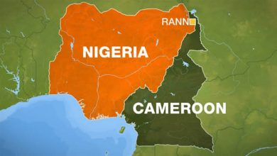 Fact-check: Is Nigeria on the Verge of Losing 24 Local Governments To Cameroon?