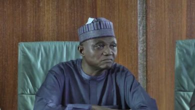 Presidency Accuses Katsina Traditional Rulers Of Colluding With Bandits