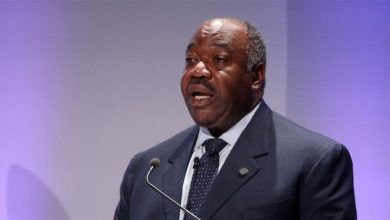 President Bongo's Allies Unhappy, Want Law Approving Same Sex Marriage Abrogated