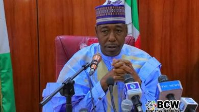 The Numerical Strength Of Troops Fighting Insurgents Is Lean - Gov. Zulum
