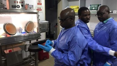 Analysis: Nigeria's COVID-19 Testing Increases By 94% From April, Still Among Lowest In Africa