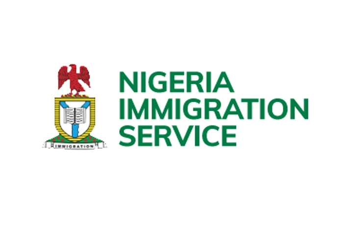 Covid-19: Immigration Refuses Departure of 58 Nigerian Doctors to UK