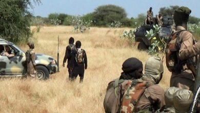 ISWAP Conducts Twin attacks In Borno