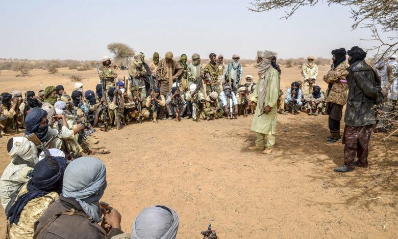 Niger Republic-Based Jihadists Terrorising Local Armed Groups In Zamfara, Seize Arms, Re-loot Livestock - Sources