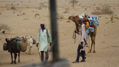 UNSC Holds Debate On Climate Security, As Lake Chad Battles Climate Crisis