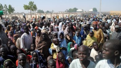 1.9 million people remain internally displaced in Northeast - UN