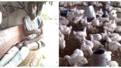 Police 'Torture' 2 to Death Over Theft Of 7 Chickens in Bauchi