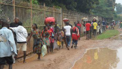 Central African Republic: Over 405 IDPs Arrive Aigbado After Ouadda Maikaga Massacres