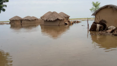 Floods Hit Cameroon As Over 6,000 Displaced In Far North Region Alone