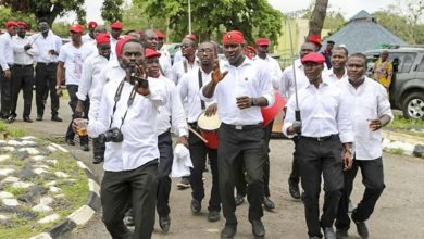 Litany Of Cult Activities In Anambra State