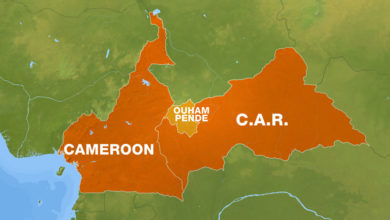Central African Republic: Fears Over Smooth Elections Mount As 3R Rebels Increase Attacks