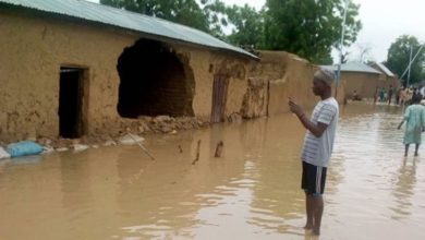 Flood Destroys Over 50,000 Houses in Jigawa
