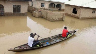 Nigerian Hydrological Agency Warns Of More Floods, Food Scarcity