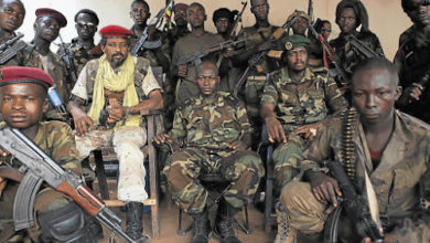 Central African Republic: Rebels Capture Nanga Boguila Town From Government Control