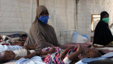 Malaria: MSF Treats 3, 287 Children In Borno