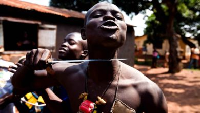 Central African Republic: Rebels Threaten To Destroy Towns Over December Elections