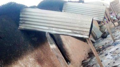 Terrorists Murder Village Head, Army Officer, 18 Others In Katsina Village