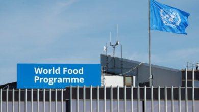 UN Food Programme Receives 2020 Nobel Peace Prize
