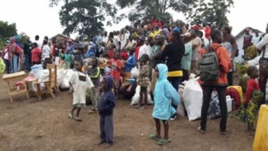 400 Central African Republic Return Home From Cameroon
