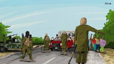 Boko Haram Abducts About 30 Passengers, Kill Soldier along Maiduguri Road
