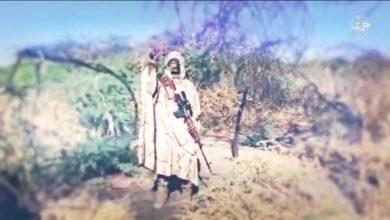 Boko Haram Lake Chad Franchise Showcases Weapons, Sniper
