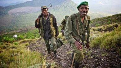 Four Dead, Five Wounded As Pygmies, DR Congo Army Clash