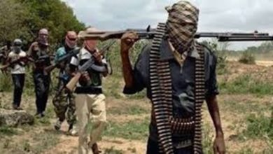 Terrorists Kill Five, Abduct Five Others In Zamfara