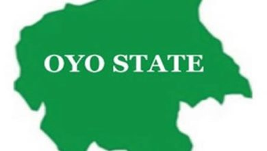 11 Days After Abduction, Oyo Lawmaker's Sister Regains Freedom