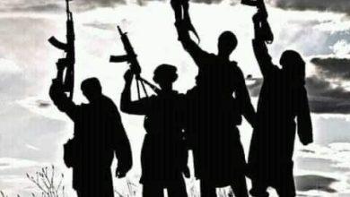 Gunmen Kill 3 Infants, 6 Others In Birnin Gwari