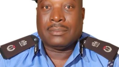 Insecurity: 1503 Criminals Arrested In 2020 In Katsina